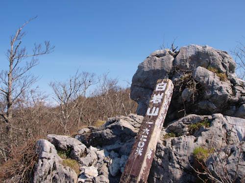 白岩山の山頂